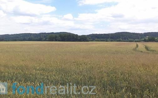 Prodej pozemku, 30364 m², Roudné, okres České Budějovice