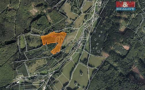 Prodej lesa 23052m², Vápenná, okres Jeseník
