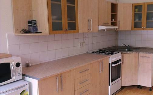 Pronájem bytu 1+1, 47 m², Verdunská, Ostrava - Moravská Ostrava