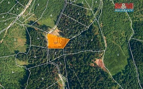Prodej lesa, 2930 m², Lhota u Vsetína, okres Vsetín