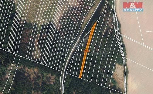 Prodej lesa, 5346 m², Nová Hradečná, okres Olomouc