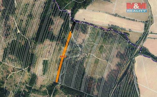 Prodej lesa, 6647 m², Nová Hradečná, okres Olomouc