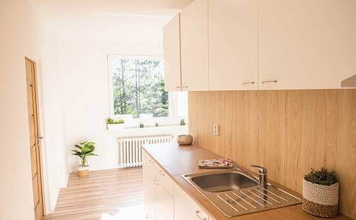 Prodej bytu 2+1, 52 m², Gagarinova, Teplice - Trnovany