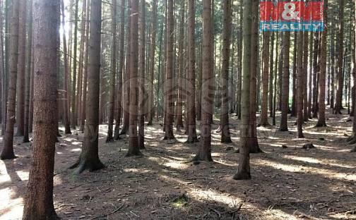 Prodej lesa 2924m², Bzenec, okres Hodonín