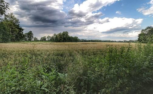 Prodej pole, 879 m², Pardubice