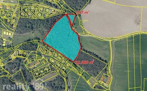 Prodej lesa, 28111 m², Klučenice, okres Příbram