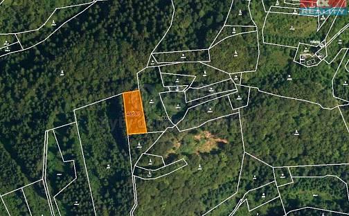 Prodej lesa, 5001 m², Halenkov, okres Vsetín