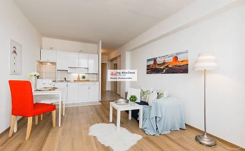 Prodej bytu 1+kk, 30 m², Kunštátská, Poděbrady - Poděbrady III, okres Nymburk