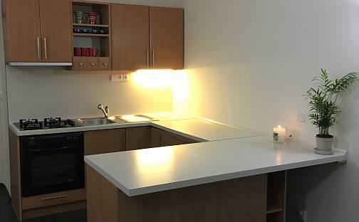 Pronájem bytu 2+kk, 44 m², V Horní Stromce, Praha 3 - Vinohrady