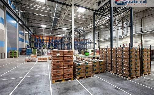 Pronájem skladovacích prostor, 3961 m², Divišov - Měchnov, okres Benešov