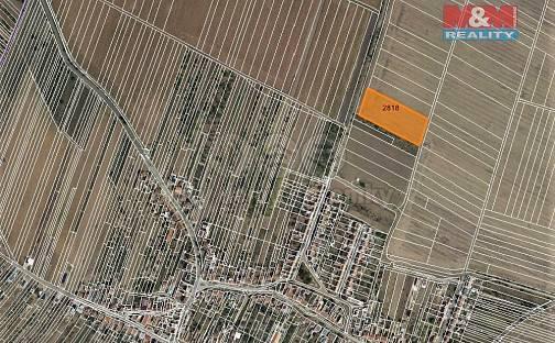Prodej pole, 5315 m², Šakvice, okres Břeclav